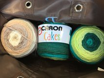 Caron Cakes Yarn in Perry, Georgia