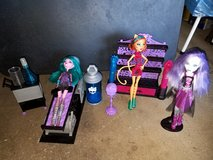 Monster High lot in Orland Park, Illinois