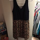 women's dress size L in Tampa, Florida