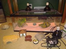 2 leopard geckos with everything OBO in Minneapolis, Minnesota