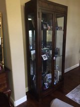 Lighted Glass/Mirror Cabinet in Kingwood, Texas
