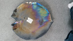 Shell or Leaf shape decrotive plate in Lakenheath, UK