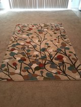 Area rug in Hemet, California