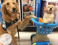 Yard Sale Fundraiser: paws4people in Jacksonville, Florida