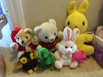 Bears, Bunnies, Owl, Dino stuffed animals in Camp Lejeune, North Carolina