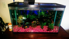 30 G Fish tank in Travis AFB, California