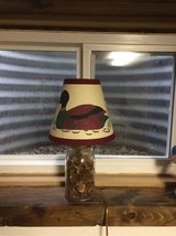Lamp and Shade in Aurora, Illinois