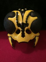Insect Mask in Joliet, Illinois