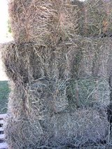 Grass Bales with a little Alfalfa - Average 50 lbs. in Alamogordo, New Mexico