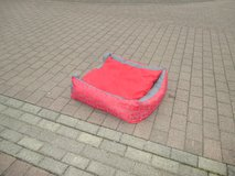 big dog bed in Ramstein, Germany