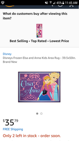 Disney Frozen Elsa and Anna Kids Area Rug - 39.5x50in. in Alamogordo, New Mexico