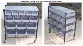 Utility Storage Cart with 15 Drawers in San Diego, California