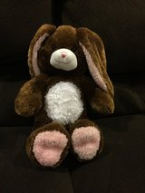 Reduced: Bulldabear Brown Bunny in Yorkville, Illinois