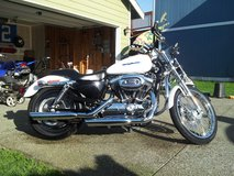 2006 Harley Davidson Sportster 1200 Custom XL in Tacoma, Washington
