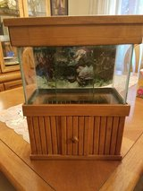 Fish Tank.  Beta tank in Batavia, Illinois