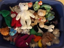 Beanie Babies in Vacaville, California
