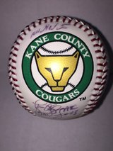 Kane County Cougar Ball in Westmont, Illinois