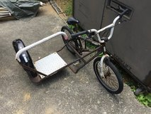 Bmx with side car for project in Okinawa, Japan