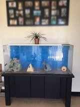 55 Gal Tank with accessories in Travis AFB, California