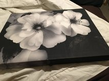 Flower Canvas in Fort Carson, Colorado