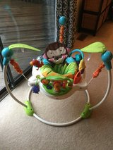 Fisher Price jumperoo in Elgin, Illinois