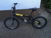 2 Bikes for Free in Ramstein, Germany