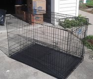 Extra Large Dog Crate, 2 Access Door, Collapsible, Folds Up Flat in Camp Lejeune, North Carolina