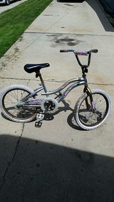 20 inch girls bike in Aurora, Illinois