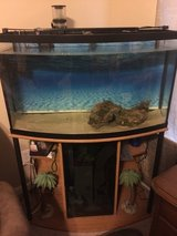 48 gallon bow front saltwater/freshwater tank in Beaufort, South Carolina