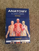 Anatomy and physiology flash cards in Camp Lejeune, North Carolina