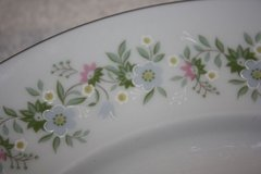 "(7) 5 pc Place Setting ""Forever Spring"" pattern John Haviland, Bavaria, Germany in Chicago, Illinois"