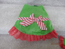 Dog Christmas Dress in Naperville, Illinois