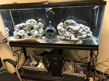 55 Gallon Aquarium w/Stand / Complete Set up in Okinawa, Japan