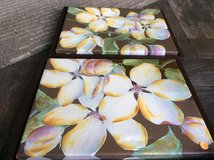 Two framed canvas pictures in Batavia, Illinois