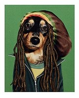 Bob Marley Pets Rock Canvas Art in Fort Irwin, California