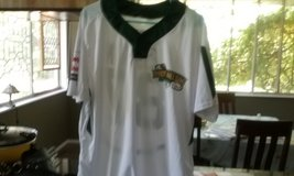 Jordy nelson softball charity jersey in Schaumburg, Illinois