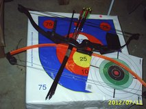 Youth Bows [ 2 compound bows ] in Pleasant View, Tennessee