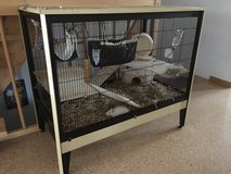 Rodent rabbit cage. in Grafenwoehr, GE