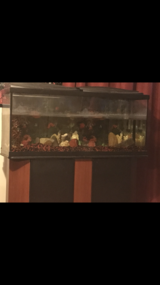 55 gallon fish tank in Fort Knox, Kentucky