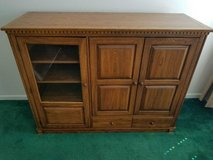 Wood Entertainment Center in Bolingbrook, Illinois
