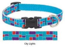 Lupine Dog Collar & Leash Set - Brand New in Kingwood, Texas