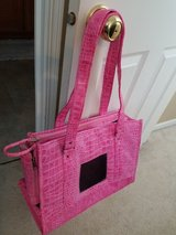 Pink Pet Carrier by Chelsea Paws in Sandwich, Illinois