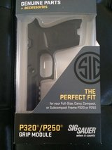 Sig Sauer P320 Compact 9mm small hand grip module in Bellaire, Texas