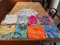 9 pieces girl's clothes size L (14) in Naperville, Illinois