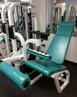 commercial gym seated leg curl weights machine in Lake Elsinore, California