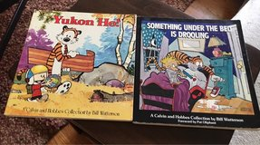 Calvin and Hobbes Books in Naperville, Illinois