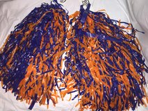 Poms orange and blue in Wheaton, Illinois