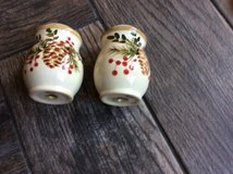 Holiday salt and pepper shakers in Batavia, Illinois