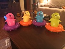 'Singing' Bath Seals in Joliet, Illinois