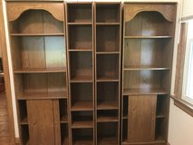 Shevling Unit w/ Storage - Book Shelves in Belleville, Illinois